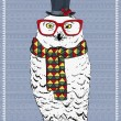 Polar Owl Hipster — Stock Vector