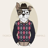 French Bulldog Hipster in colors — Stock Vector