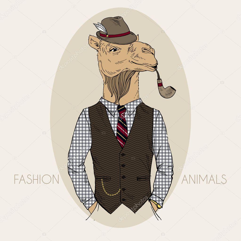 Hand getrokken mode illustratie van camel — Stockvector © olga ...