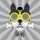 Portrait of Happy French Bulldog in bowler hat, big round glasses and striped bow with bone — Stock Vector