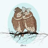 Two Polar Owl in Love — Stock Vector