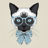 Portrait of siamese cat hipster — Stock Vector