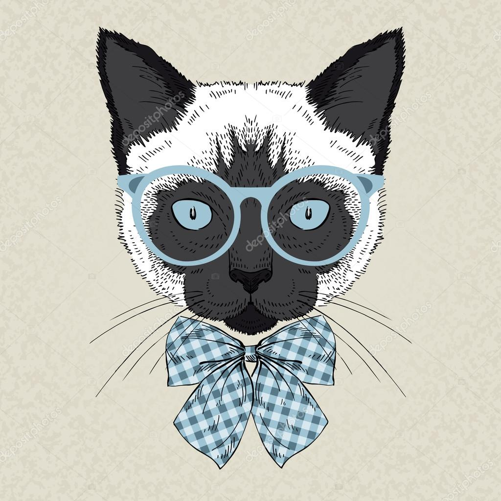 Hd wallpaper vivo - Retrato De Gato Siam 233 S Hipster Vector De Stock 169 Olga