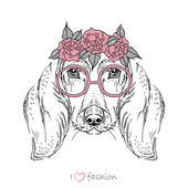 Hand drawn fashion portrait of dachshund — Stock Vector