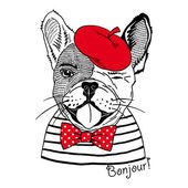 French bulldog dressed up in french style — Vetor de Stock