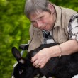Elderly woman in a wheelchair with a rabbit  — Stock Photo