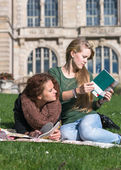 Teen girls learn together — Stock Photo