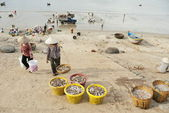 Vietnamese women carry new catch from fishing boats. — Stock Photo