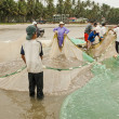 Постер, плакат: Vietnamese pull their seine out on the beach in Mui Ne Vietnam