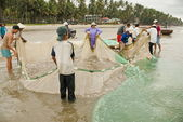 Vietnamese pull their seine out on the beach in Mui Ne, Vietnam. — Stock Photo