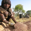 Hamer woman prepares sorghum for making beer. — Stock Photo #27946373