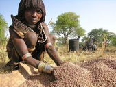 Hamer woman prepares sorghum for making beer. — Stock Photo