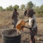 Hamer people make traditional beer near Dimeka village in Omo Valley, Ethiopia. — Stock Photo