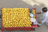 Street vendor pushes his cart full of mangoes in New Delhi, India. — Stock Photo