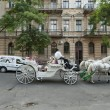Tourists ride on a horse carriage  along street in Odessa, Ukraine. — Stock Photo