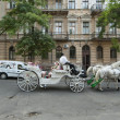 Tourists ride on a horse carriage along street in Odessa, Ukraine. — Stock Photo #35462065