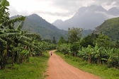 Road landscape with Ruwenzori Mountains, Uganda. — Stock Photo