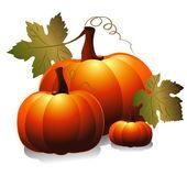 Three pumpkin — Stock Vector