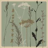 Droog gras — Stockvector