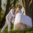 Bride and groom swinging on swing — Stock Photo #28484245