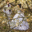 Groom and bride in white dress on a background of flowering tree — Stock Photo
