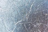 Grunge texture of cracked — Stock Photo