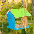 Green wooden bird nest box — Stock Photo #35022347