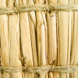 Fence of dry cane — Stock Photo
