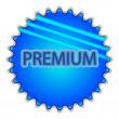 "Big blue button labeled ""Premium"" — Stockvektor"