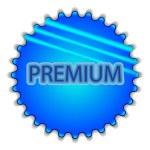 "Big blue button labeled ""Premium"" — 图库矢量图片"
