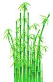 Bamboo sticks over white background — Stockvector