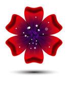 Broszura projektu, streszczenie tło z piękne kolorowe kwiatki — Zdjęcie stockowe