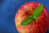 Apple with mint — Stock Photo