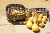 Piles of gourds on the ground — Stock Photo