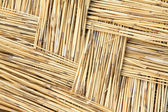 Reeds curtain texture feature — Stock Photo