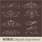 Vector set of calligraphic design elements and page decoration elements — Stock Vector