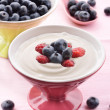 Fresh blueberry yogurt — Stock Photo #28214473