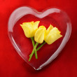 Yellow roses inside glass heart with red background — Stock Photo