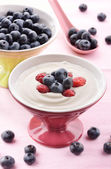 Fresh blueberry yogurt — Stock Photo