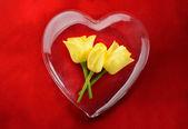 Gele rozen in glazen hart met een rode achtergrond — Stockfoto