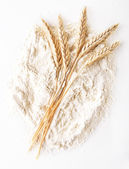 Weizenmehl — Stockfoto