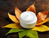 Anti-aging cream — Stock Photo