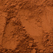 Cocoa powder — Photo