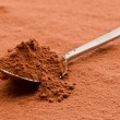 Cocoa powder on a spoon — Stock Photo #29067647