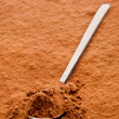 Cocoa powder on a spoon — Stok fotoğraf