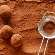Chocolate truffles — Foto Stock #29067673