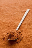 Cocoa powder on a spoon — Stock Photo