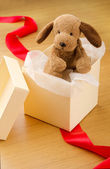 Gift puppy toy — Stock fotografie