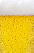 Beer texture — Stock Photo