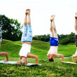 Stock Photo: Group of people doing yoga